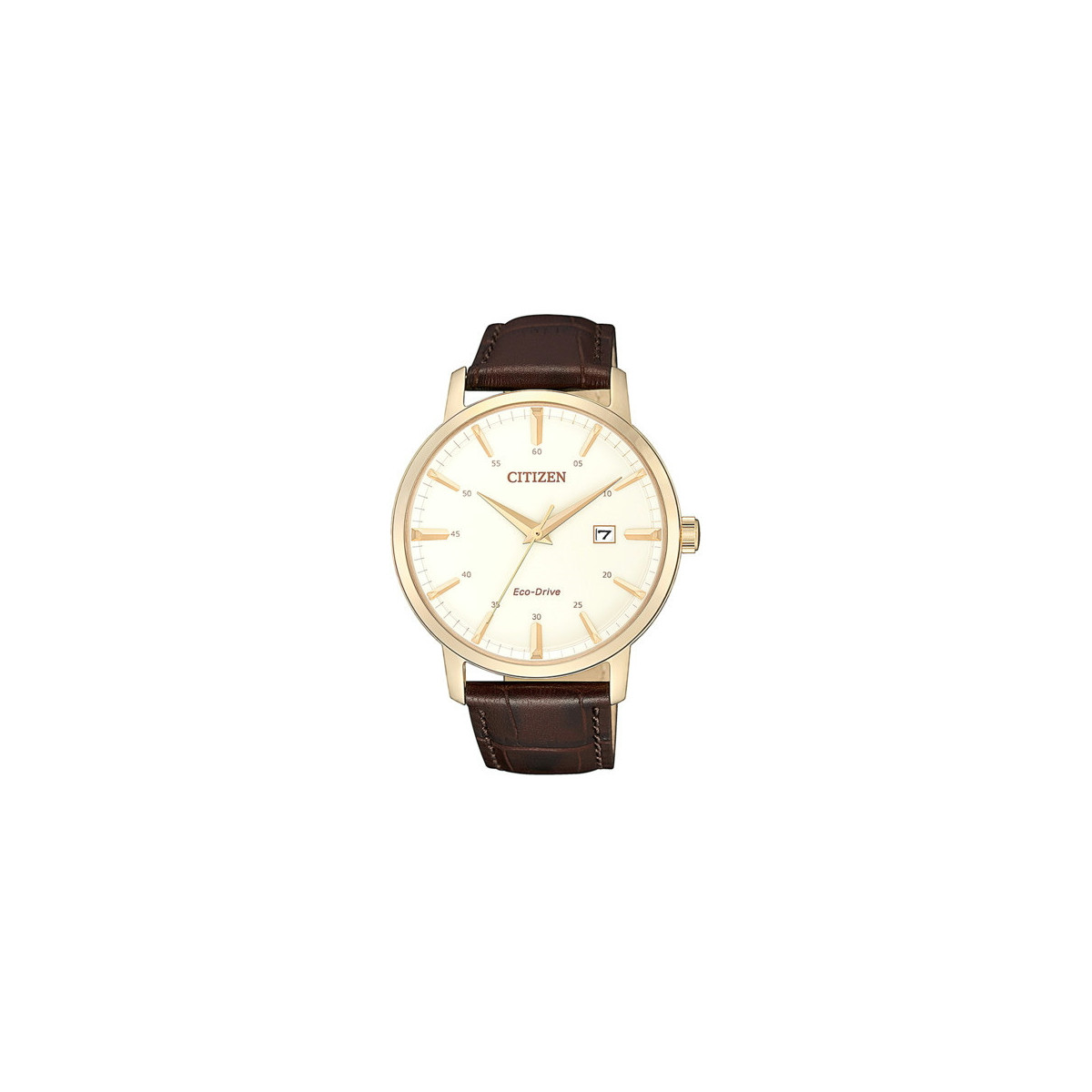 Reloj Citizen Eco-Drive Piel Clásico BM7463-12A